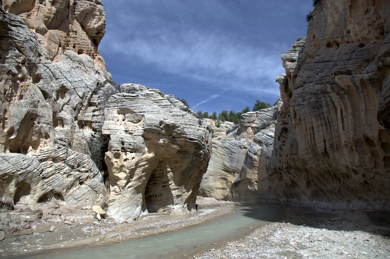Upper Paria River