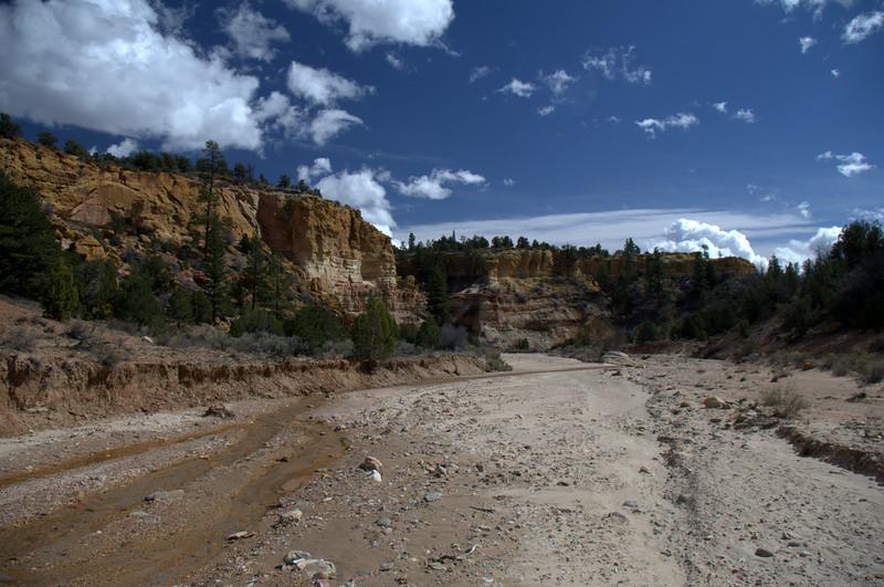 Upper Paria River